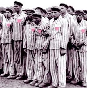Triángulo rosa: La persecución de los homosexuales en la epoca nazi