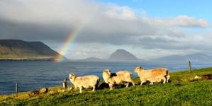 Dinamarca: Los matrimonios del mismo sexo son legales en las Islas Feroe