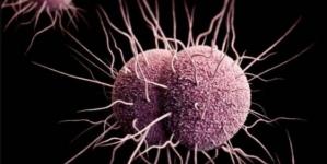 Se registra el primer caso de super gonorrea