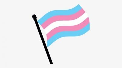 Aparece en Whatsapp emoji de la bandera trans